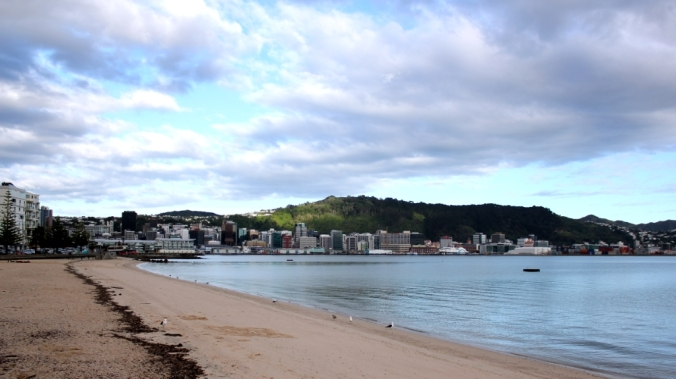 Oriental Bay, Wellington on New Year's Day, 2015. The water that day was the calmest we've ever seen. Photo by Steve Collier, 2015.